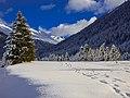 Alps of Switzerland DSC 1675-2 (14132687887).jpg