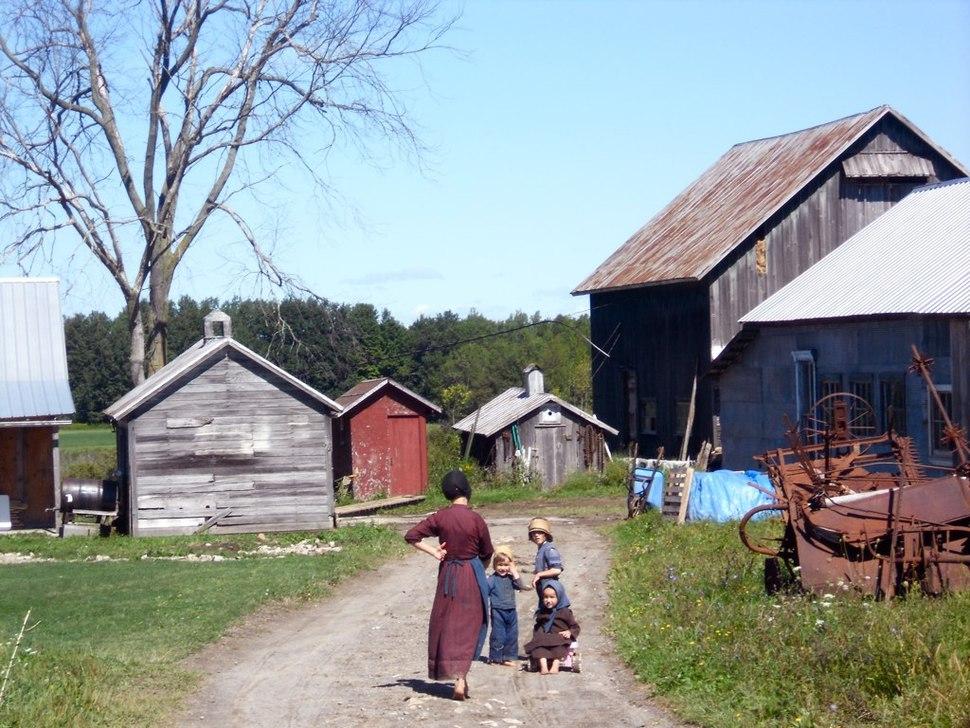 Amish farm morristown new york
