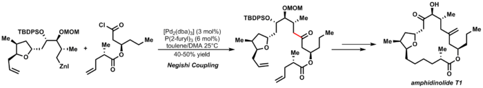 Negishi Cross coupling reaction in the total synthesis of Amphidinolide T1