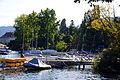 Arboretum Zürich - Hafen Enge - General-Guisan-Quai 2013-09-21 16-44-07.JPG