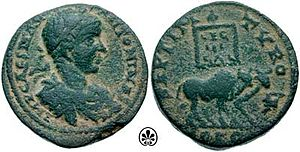 Legio III Gallica - Two bulls, symbol of the III Gallica, bearing the legion standard LEG III GAL. Coin of Elagabalus, who became emperor with the decisive support of this legion.