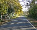 Ashby Lane towards Bitteswell - geograph.org.uk - 625993.jpg