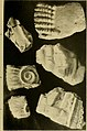 Atti della Accademia di scienze lettere e arti di Palermo (1917) (20352729761).jpg