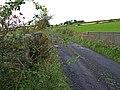 Auchenames Farm Road - geograph.org.uk - 989942.jpg