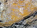 Auriferous volcanic breccia (Little Annie Mine, Summitville Mining District, San Juan Mountains, Colorado, USA) 3 (17044752775).jpg