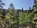 Aussichtsfelsen Ilsestein - panoramio.jpg