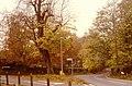 Autumn at South Weald, Essex - geograph.org.uk - 1828429.jpg