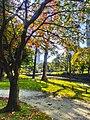 Autumn in Hama-rikyu garden - Nov 9 2017.jpg