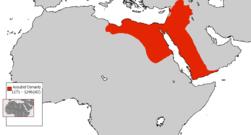 Ayyubid Dynasty 1171 - 1246(AD).png
