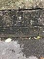 B54689-D.jpg