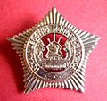 BADGE - Lesotho - Royal Lesotho Mounted Police (1986 to 1998) (7951147530).jpg