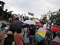 BP Oil Flood Protest NOLA brollys 3.JPG