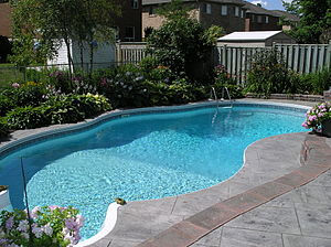 Swimming pool - Backyard swimming pool