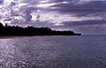 Bahamas 1988 (053) New Providence Nordküste (23365103546).jpg