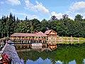 Baia Sprie, Romania - panoramio (10).jpg