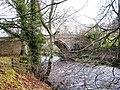 Balder Bridge through the trees - geograph.org.uk - 1593192.jpg