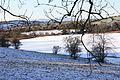 Ballydugan Lake (12), January 2010.JPG