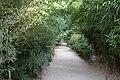 Bambouseraie de Prafrance 20100904 122.jpg