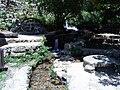 Banias River02.JPG