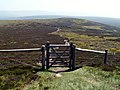 Barrow Stones through the gate to Round Hill - geograph.org.uk - 457685.jpg