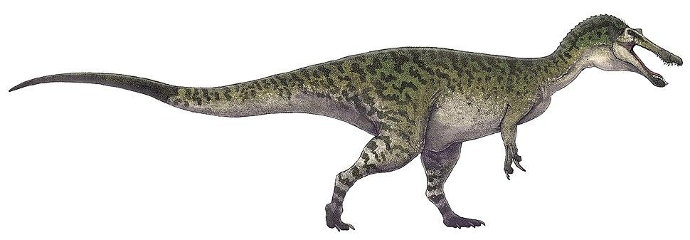 Baryonyx walkeri restoration