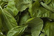 Fresh basil leaves.