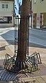 Baumschutzgitter mit Radabstellplätzen in Bleiburg.jpg