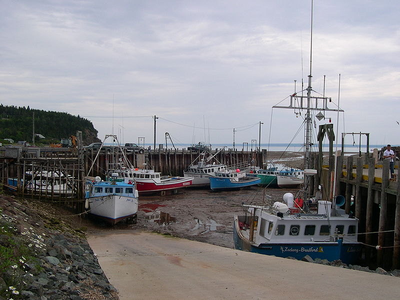 800px-Bay_of_Fundy_-_Tide_Out.jpg