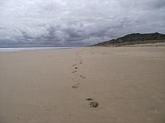 Venus Bay, Victoria - Beach 4