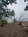 Beach at tip of point pelee.jpg