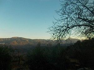Benatae y, tras las ramas, el Yelmo visto desde Los Lagartos.jpg