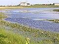 Benbecula Loch na Craoibhe Bige 1.jpg