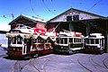 Bendigo trams 1987.JPG