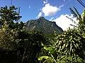 Berg - panoramio (7).jpg