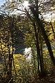 Bern Canton - panoramio (269).jpg