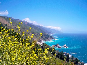 English: Big Sur Coast in Central California l...