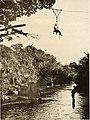 Big game shooting on the equator (1908 (1907)) (19747242204).jpg