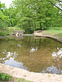 Blackpool Brook passing through a man-made pool - geograph.org.uk - 811006.jpg