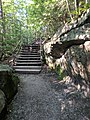 Blackwater Falls State Park WV 29.jpg