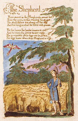 Shepherd's crook - Image: Blake shepherd