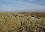 File:Blakeney Point - geograph.org.uk - 1567573.jpg