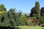 Bloedel Floral Conservatory, Queen Elizabeth Park - Vancouver, Canada - DSC07609.JPG