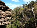 Blue Mountains near Katoomba (5).jpg