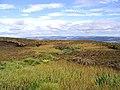 Boggy ground at Millstone Edge - geograph.org.uk - 548151.jpg