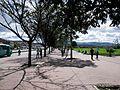 Bogota arboles parque Tercer Milenio carrera 10 Decima.JPG