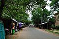Bolpur-Santiniketan Road - Shyambati - Birbhum 2014-06-29 5475.JPG
