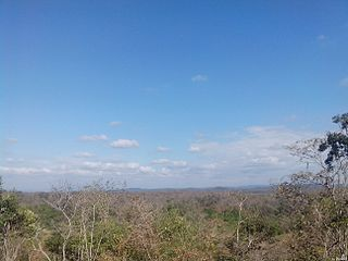 Tumbes-Piura dry forests