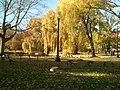 Boston Public Garden - panoramio - Ryusuke Seto.jpg