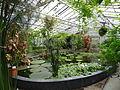 Botanischer Garten Gießen 04.JPG