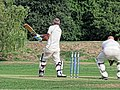 Botany Bay CC v Rosaneri CC at Botany Bay, Enfield, London 30.jpg